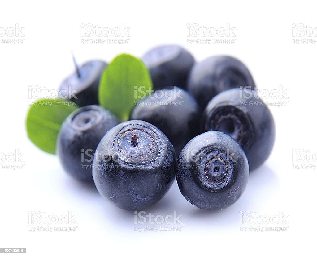 Blueberries with leaves stock photo