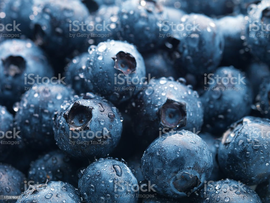 Blueberries XXL stock photo