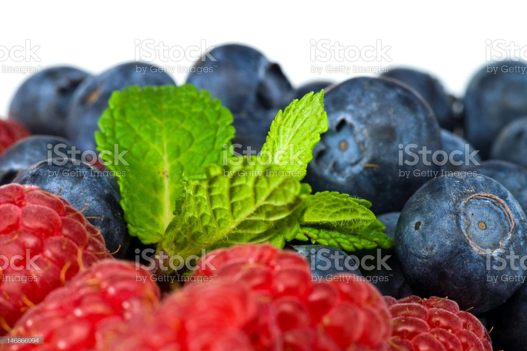 Blueberry and rasperry with mint leaves royalty-free stock photo