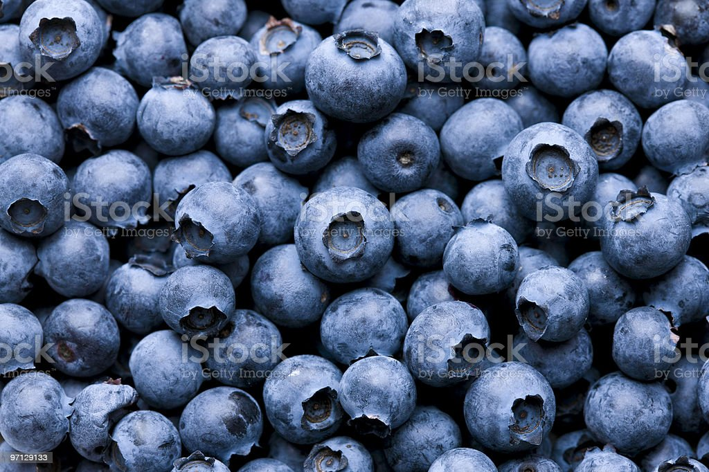 Blueberry background stock photo
