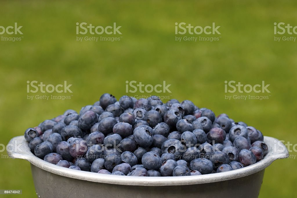 Blueberry banquet royalty-free stock photo