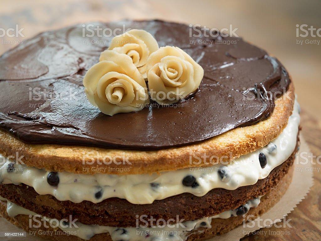 Blueberry cake with chocolate cream royalty-free stock photo