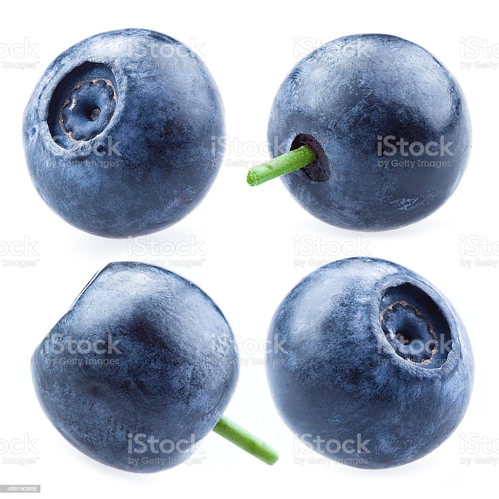 Blueberry. Collection of berries isolated on white background stock photo