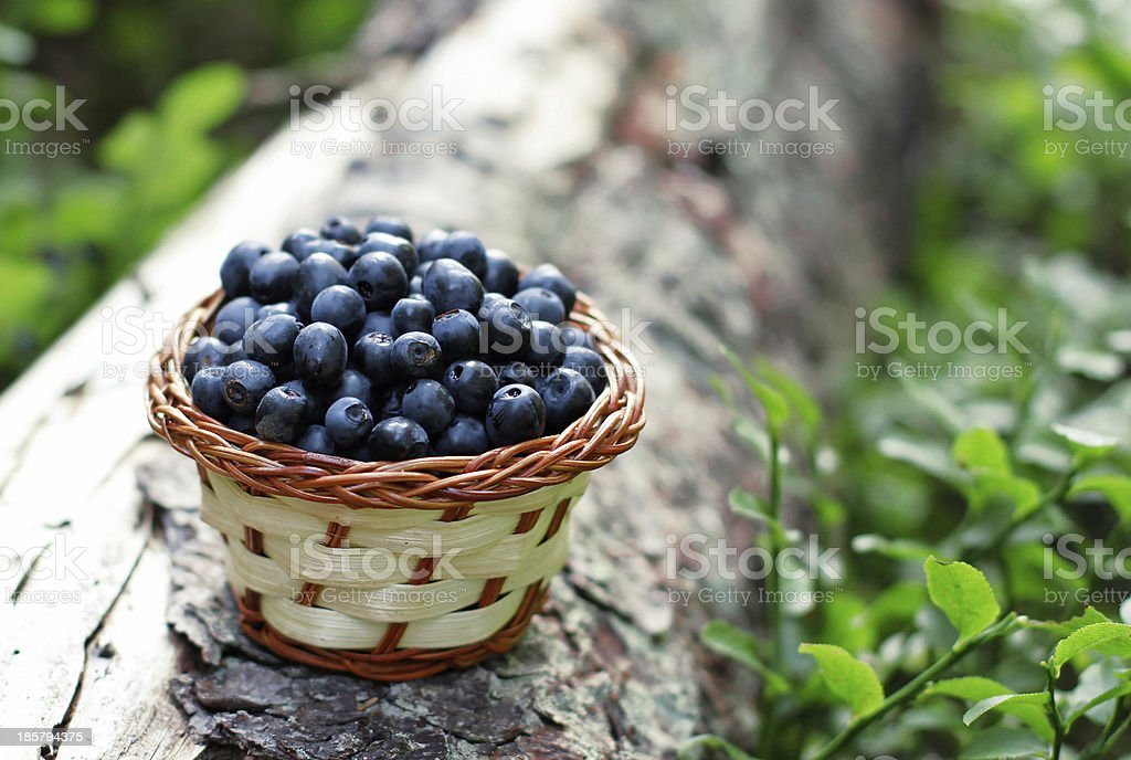 blueberry in a basket royalty-free stock photo