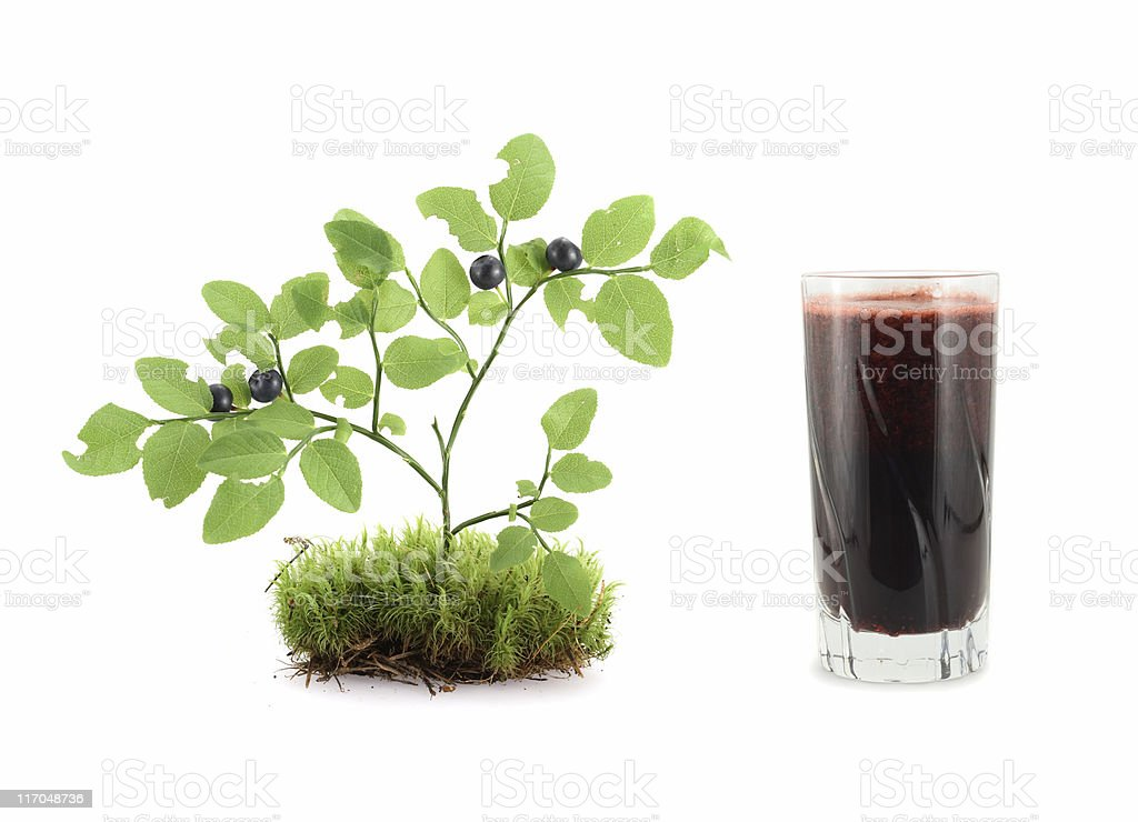 Blueberry Juice royalty-free stock photo