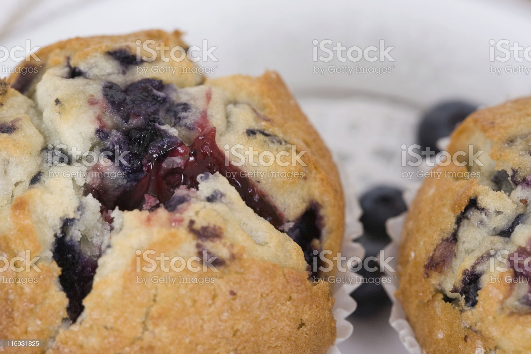 Blueberry Muffin Close-Up royalty-free stock photo