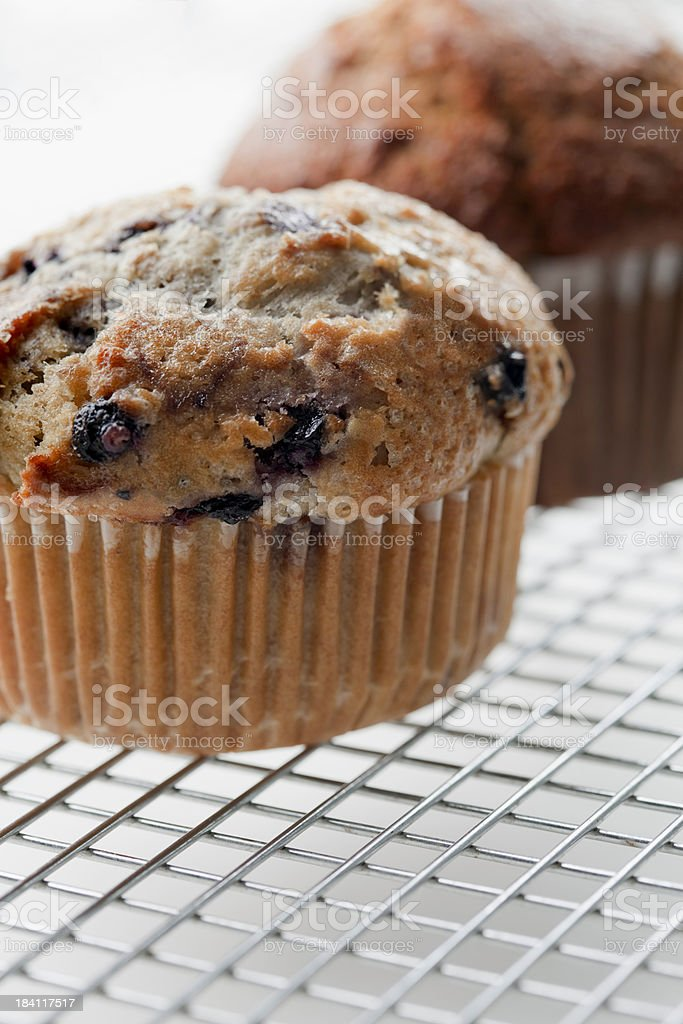 Blueberry Muffin Closeup stock photo