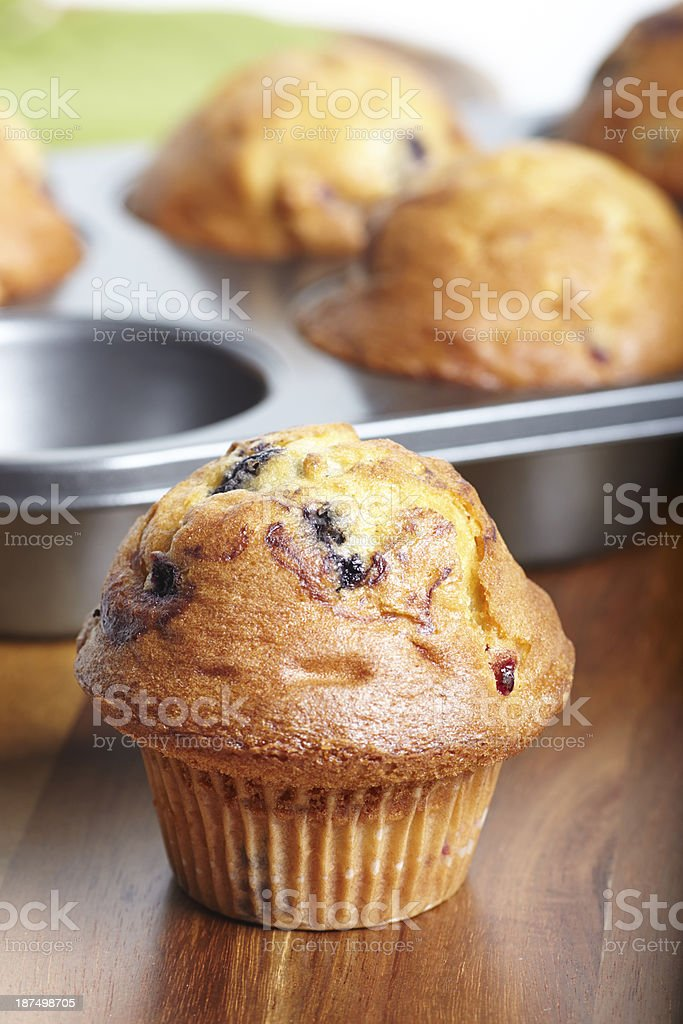 Blueberry muffin close-up with pan in background royalty-free stock photo