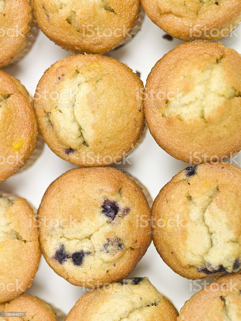 Blueberry muffins aligned on a white plate. royalty-free stock photo