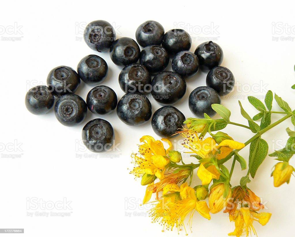 Blueberry. royalty-free stock photo
