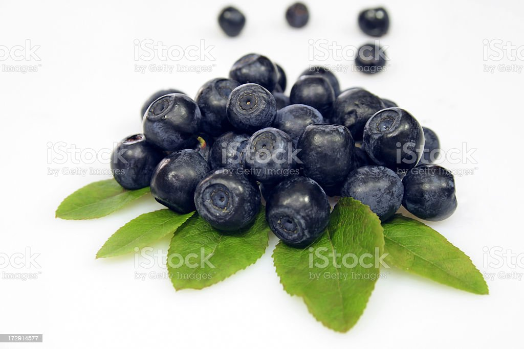BERRY - Blueberry royalty-free stock photo