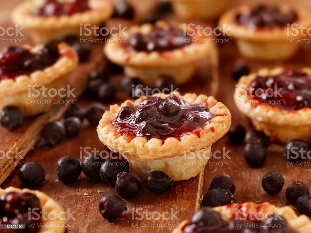 Blueberry Tarts stock photo