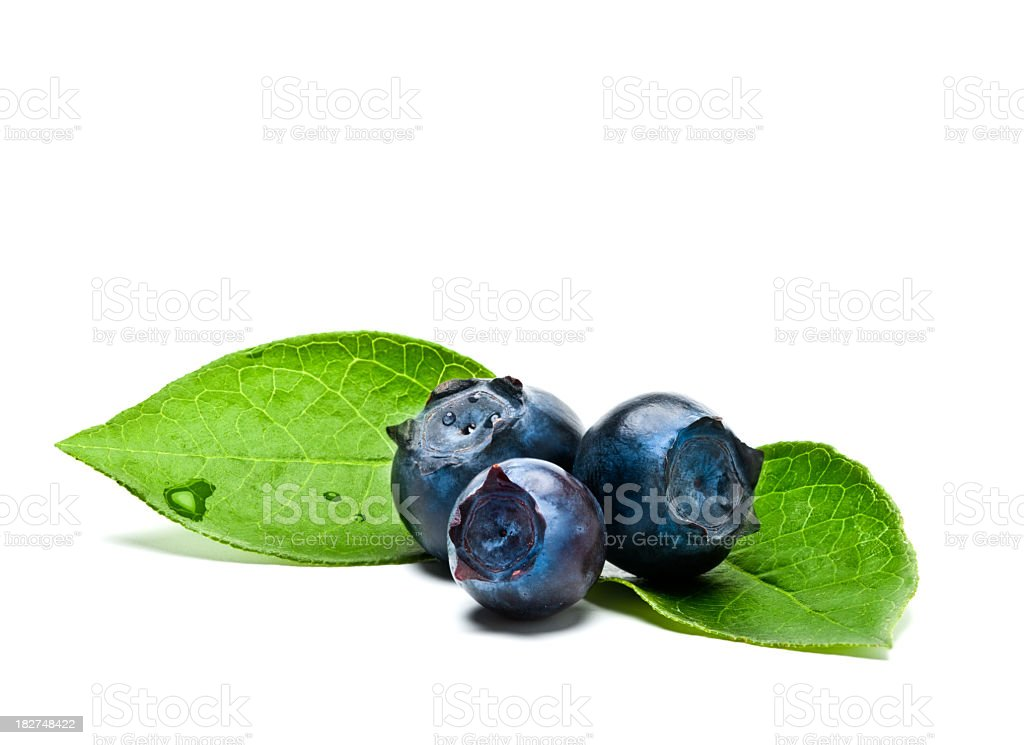 Blueberry with leaves on white royalty-free stock photo