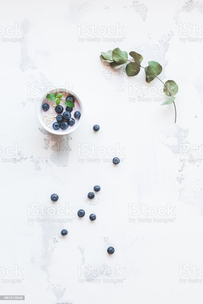 Blueberry yogurt with muesli and eucalyptus branch stock photo