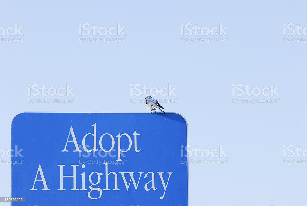 Bluebird on a Highway Sign stock photo