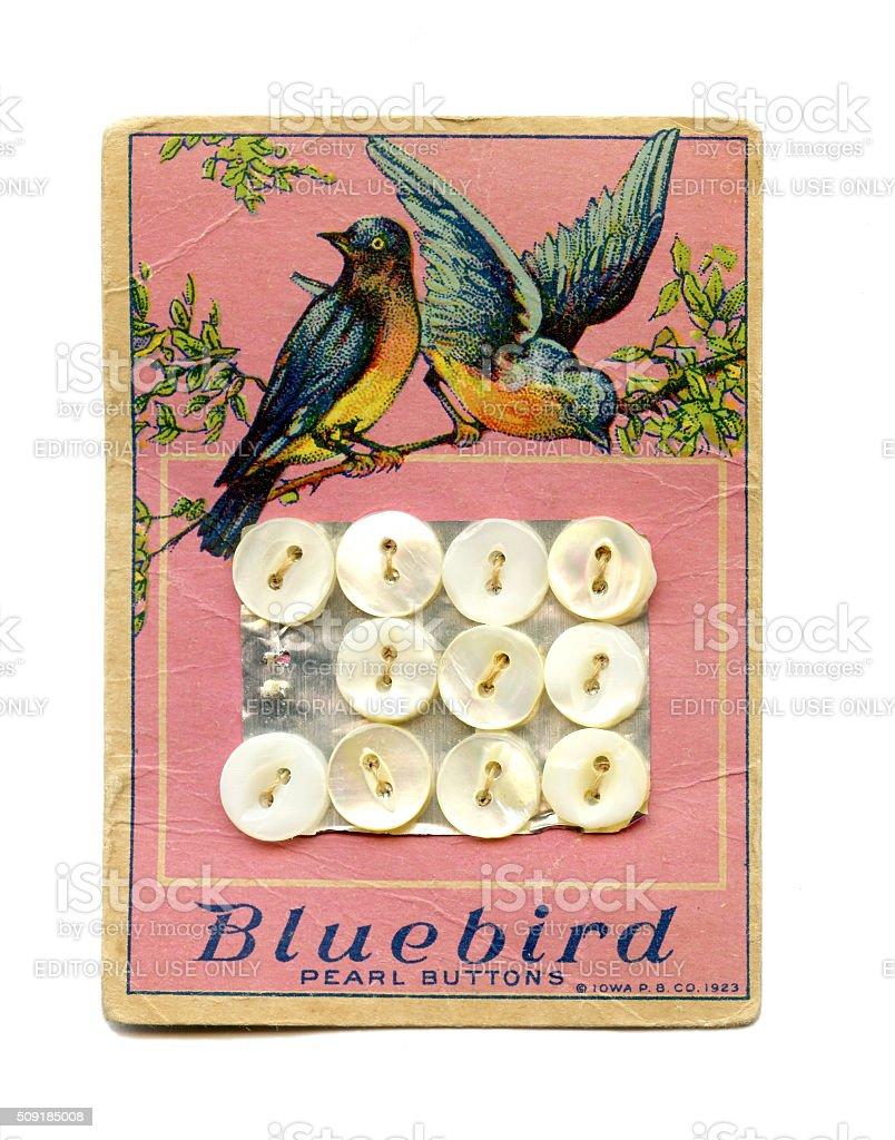 Bluebird pearl button card 1923 stock photo