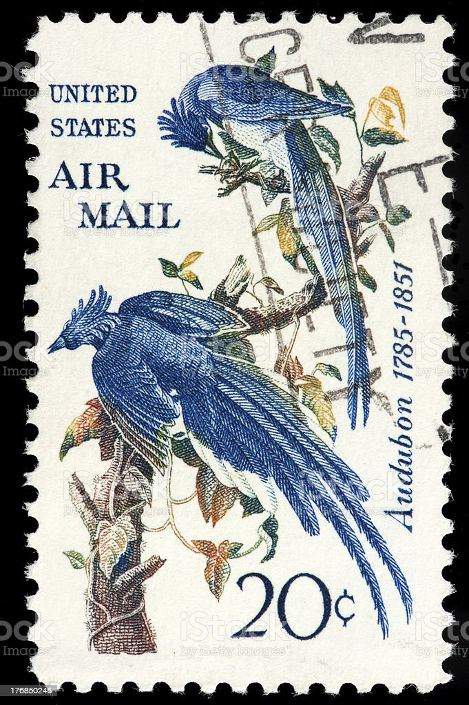 Bluebirds (John Audubon Painting) depicted on Vintage Airmail American Stamp stock photo