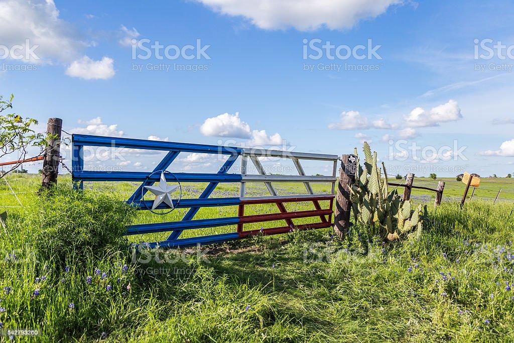 bluebonnet field in countryside  of Ennis, Texas stock photo
