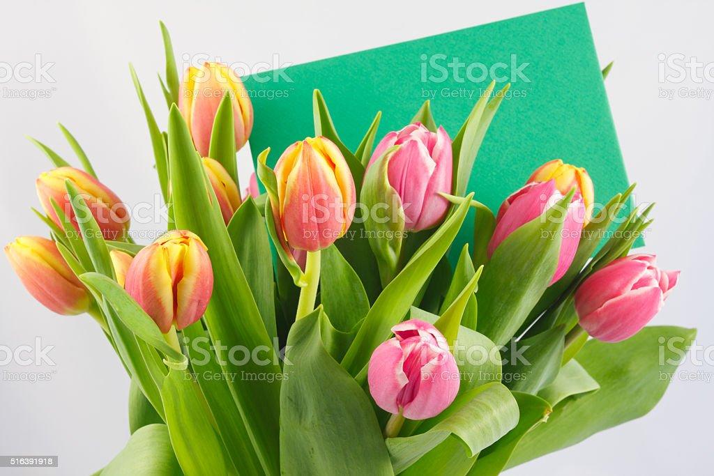 Blumengruß stock photo