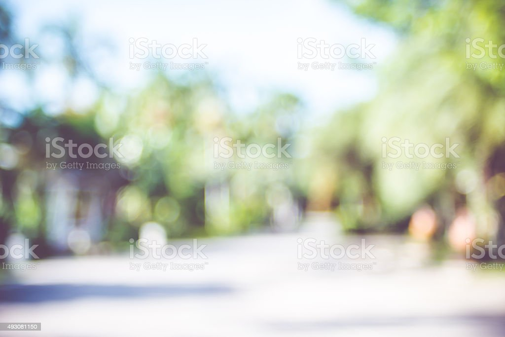 Blur background : outdoor park with tree and bokeh light stock photo