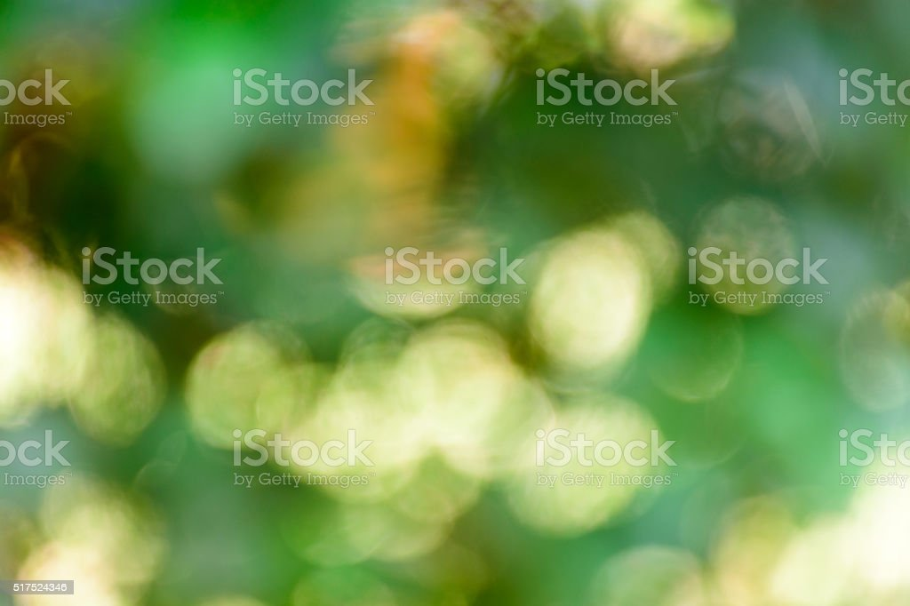 Blur bokeh nature background. royalty-free stock photo
