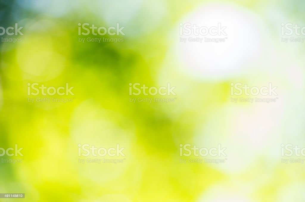 blur natural and light background in the park. stock photo
