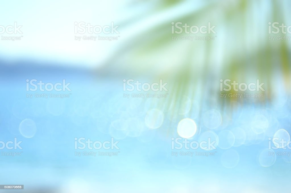 Blur palm leaf on tropical bokeh wave beach abstract background. stock photo