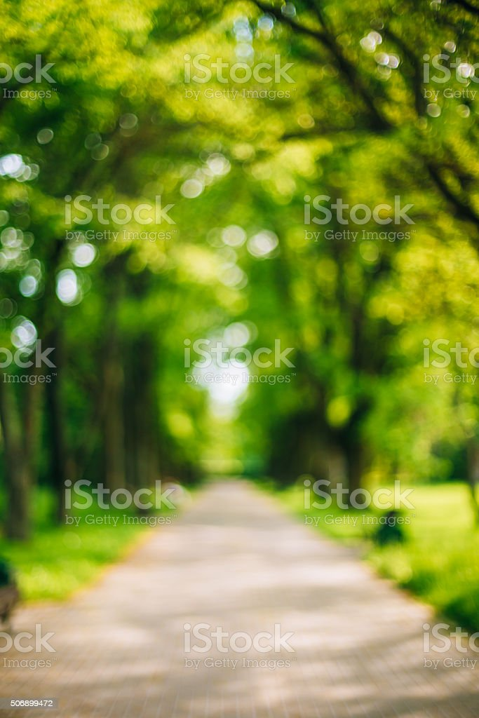 Blurred abstract bokeh natural bakground of Walkway Path With Gr stock photo
