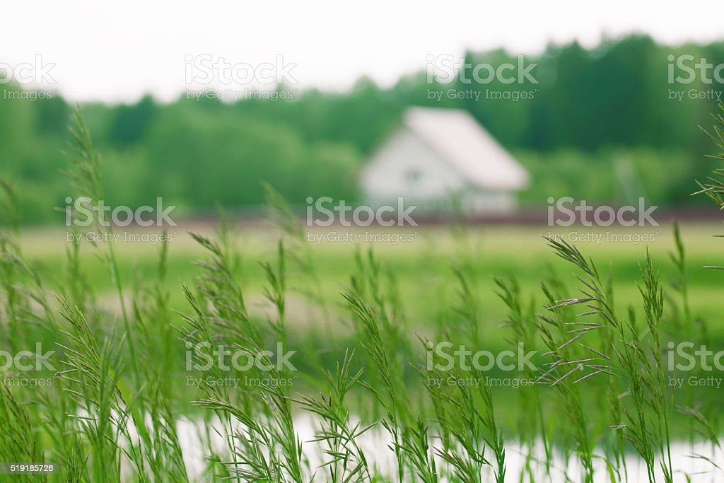 Blurred background of a country house with grass stock photo