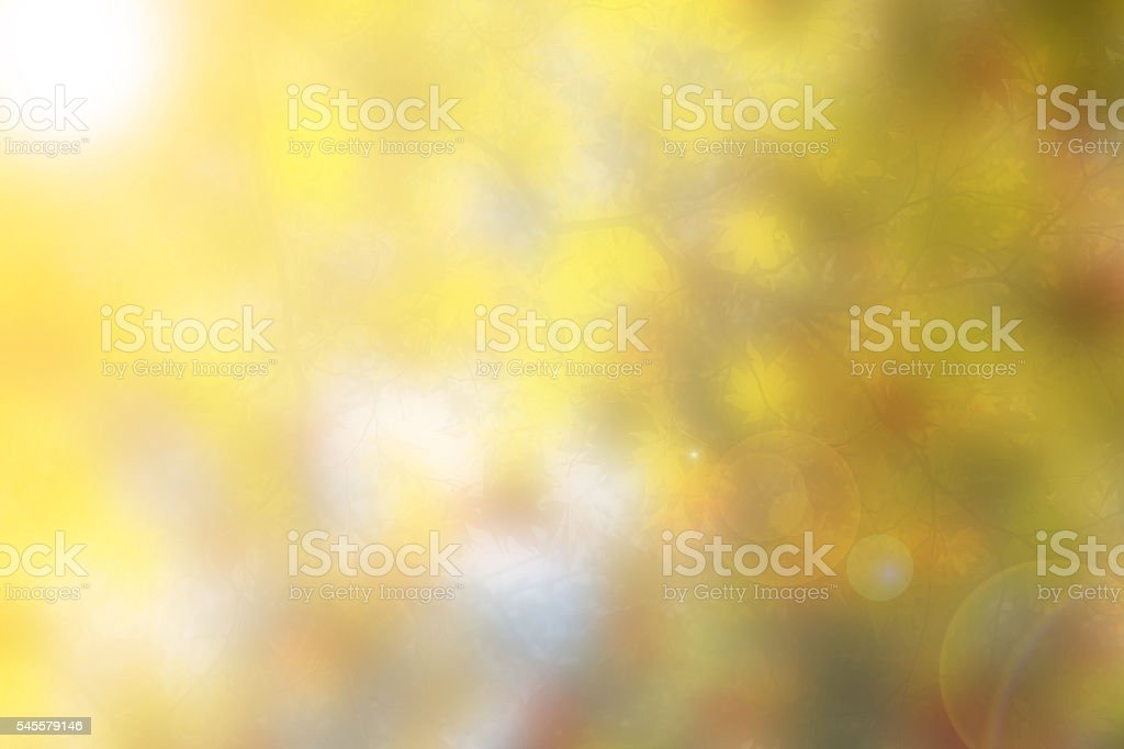 Blurred background of autumn leave stock photo