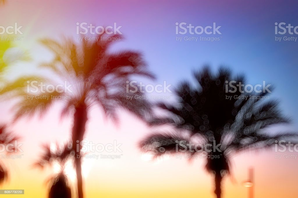 Blurred background with Palm tree bokeh stock photo