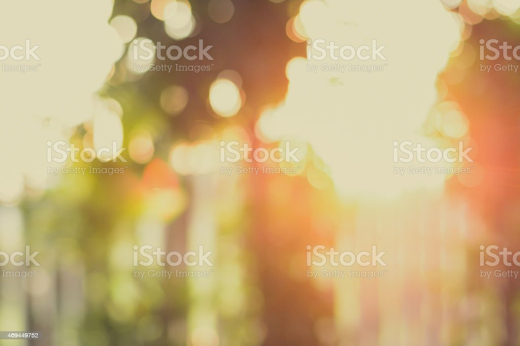 Blurred bokeh background from sunlight shining through the trees stock photo