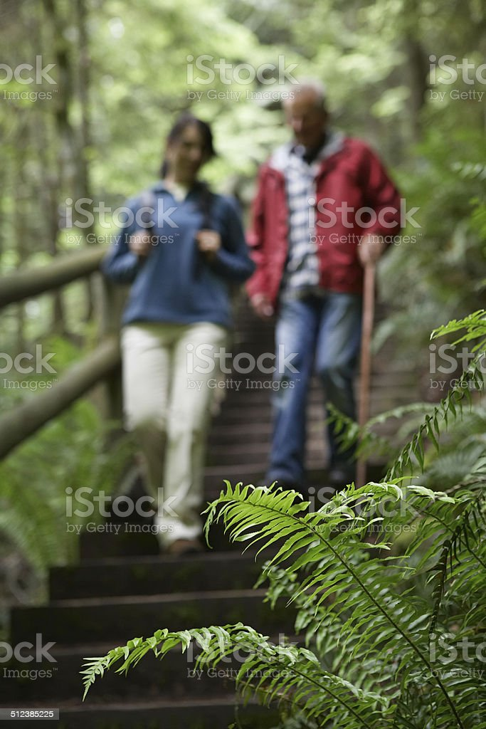 Blurred Couple Walking Down Forest Stairs stock photo