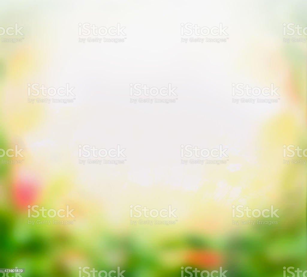 Blurred flowers garden background, border stock photo