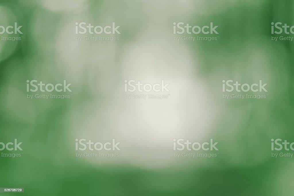 Forêt flou d'arrière-plan photo libre de droits