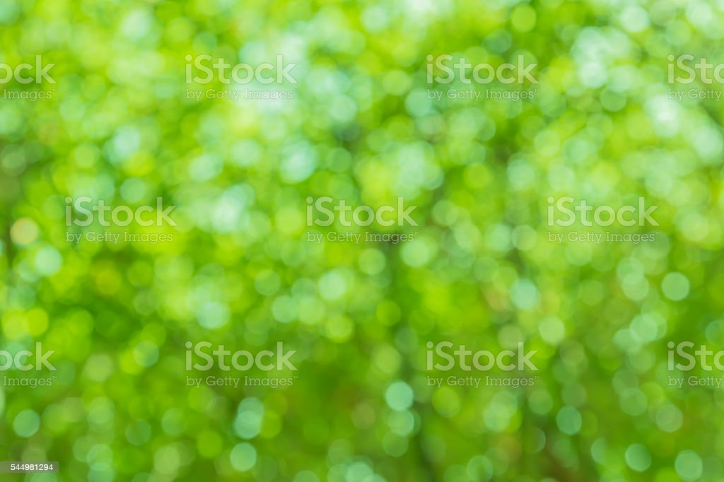 Blurred green lights circular bokeh abstract for Christmas back stock photo