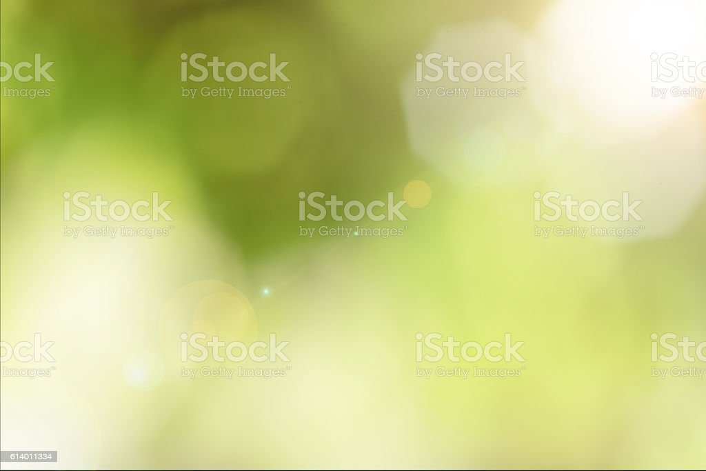 blurred lights green natural bokeh background. stock photo