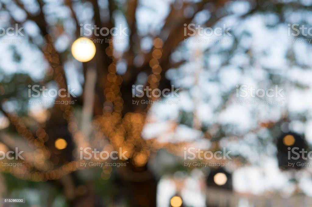 Blurred of light in garden stock photo