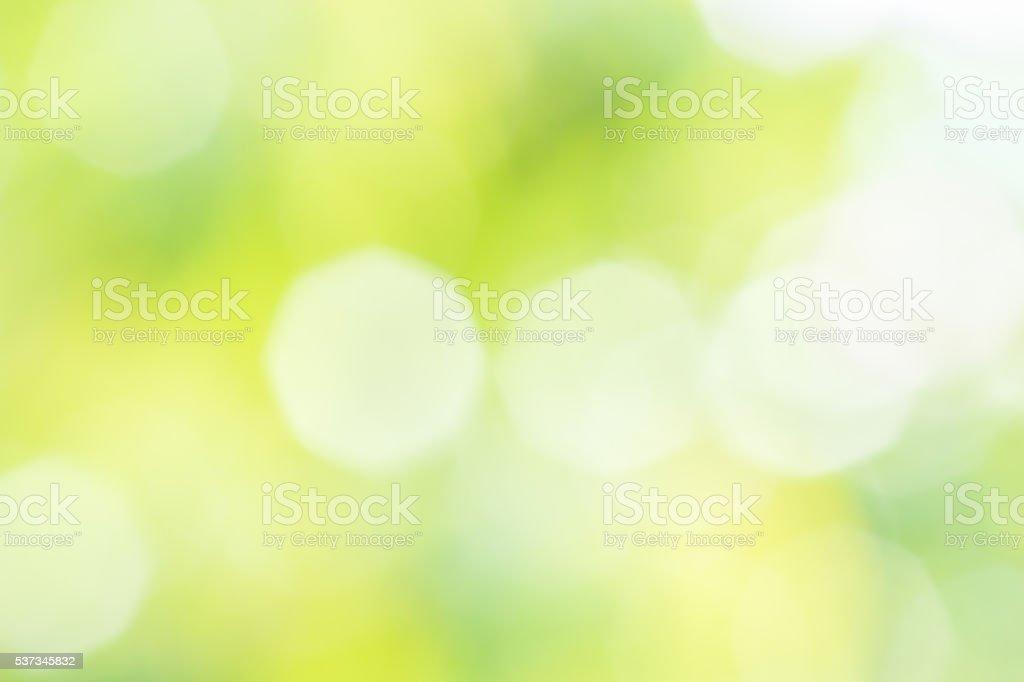 Blurred summer background with sun glare stock photo