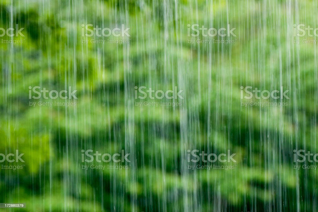 A blurred view of torrential rain in a forest stock photo
