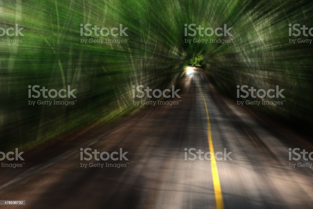 Blurry image. Speeding on the road in the dark forrest royalty-free stock photo