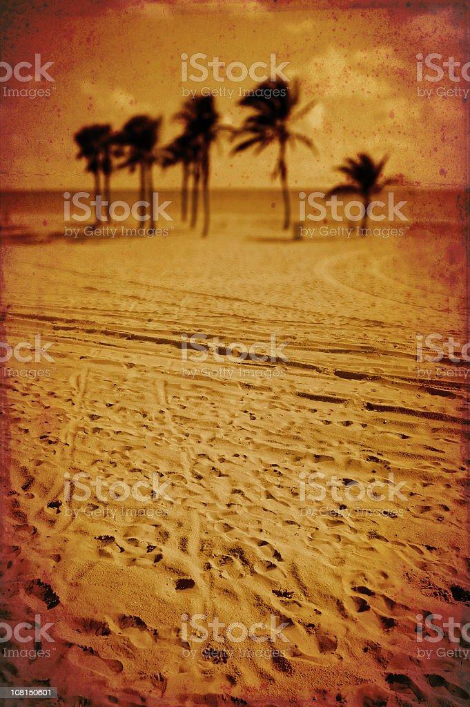 blurry palms royalty-free stock photo