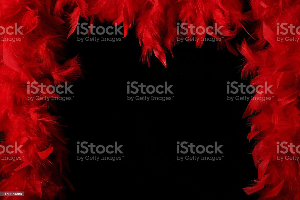Boa feathers – frame royalty-free stock photo