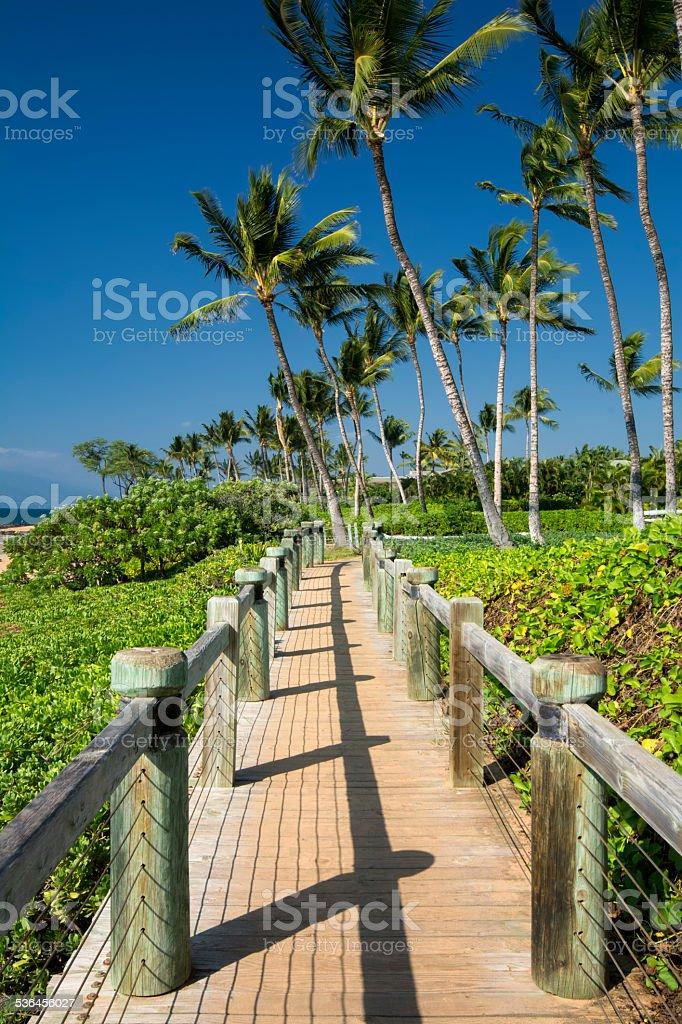 Board walk beside beach in Wailea, Maui, Hawaii, USA stock photo