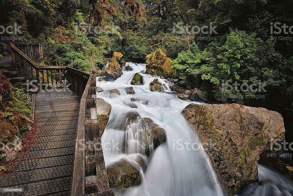 Boardwalk alongside cascading river in native bush stock photo