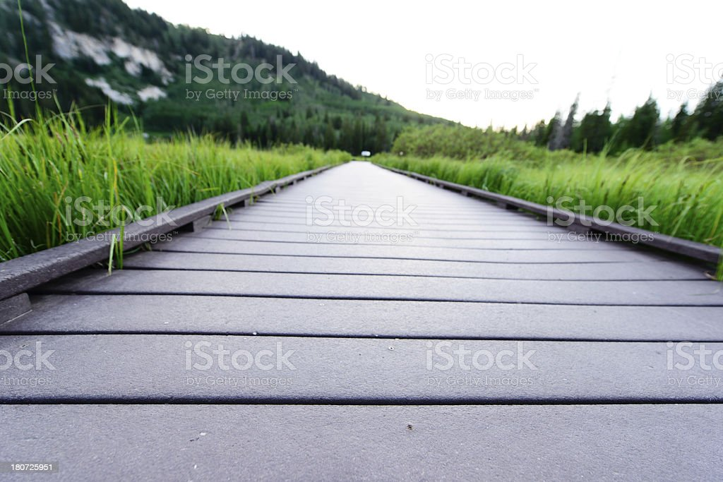 Boardwalk and Grass -  Ground Shot royalty-free stock photo