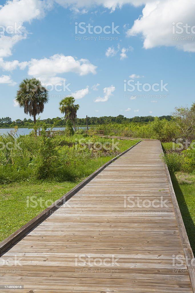 Boardwalk in Florida royalty-free stock photo