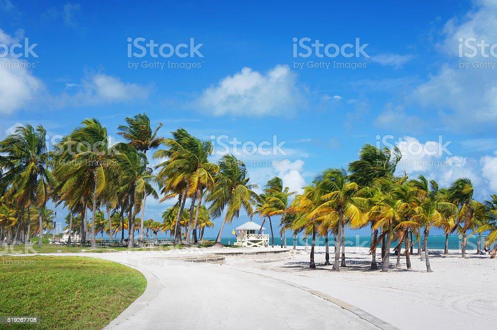 Boardwalk in the Crandon park Beach, Miami stock photo