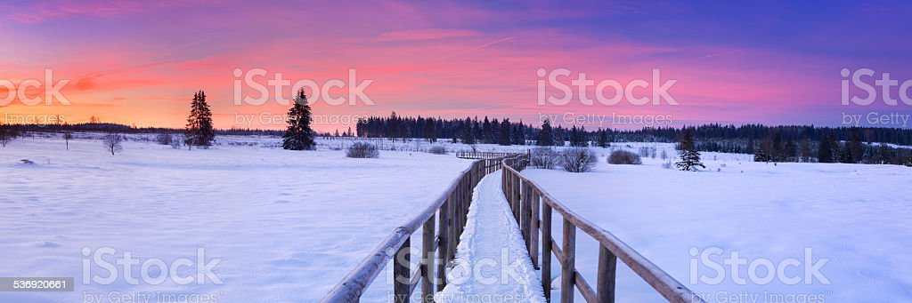 Boardwalk in the Hautes Fagnes, Belgium in winter at sunrise stock photo