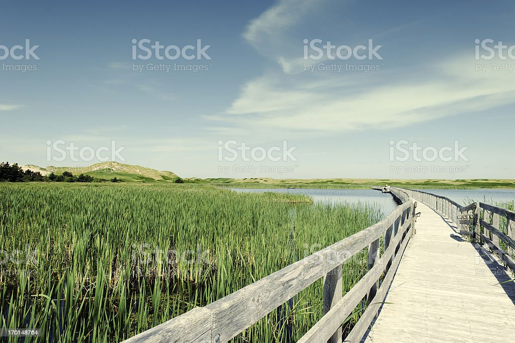 Boardwalk over Bowley Pond, Prince Edward Island National Park,Canada royalty-free stock photo